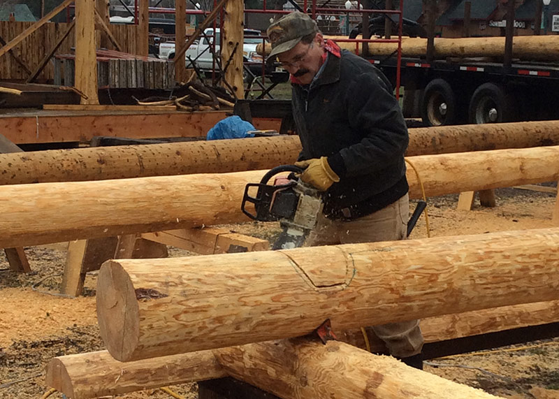 Grizzly Bob log notching