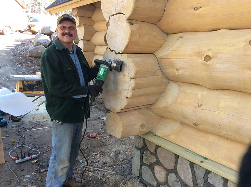 log sanding Grizzly Bob